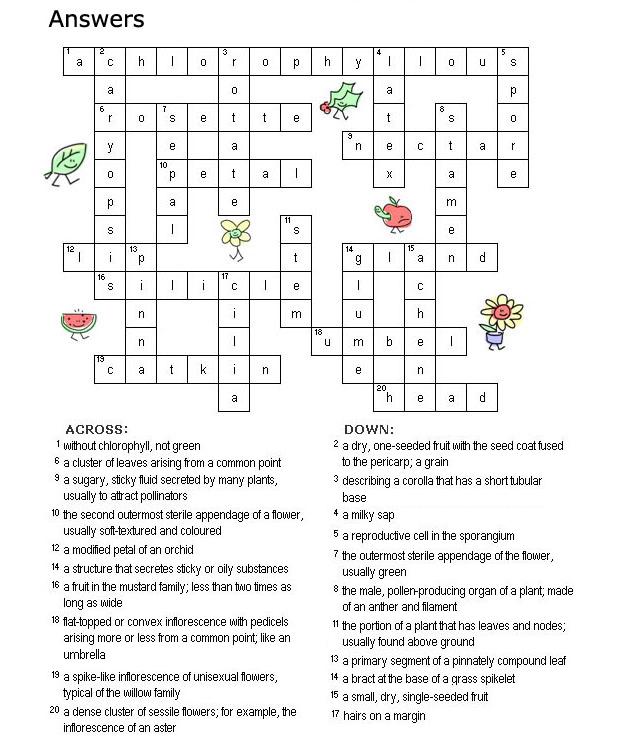 Easy Crossword Answers